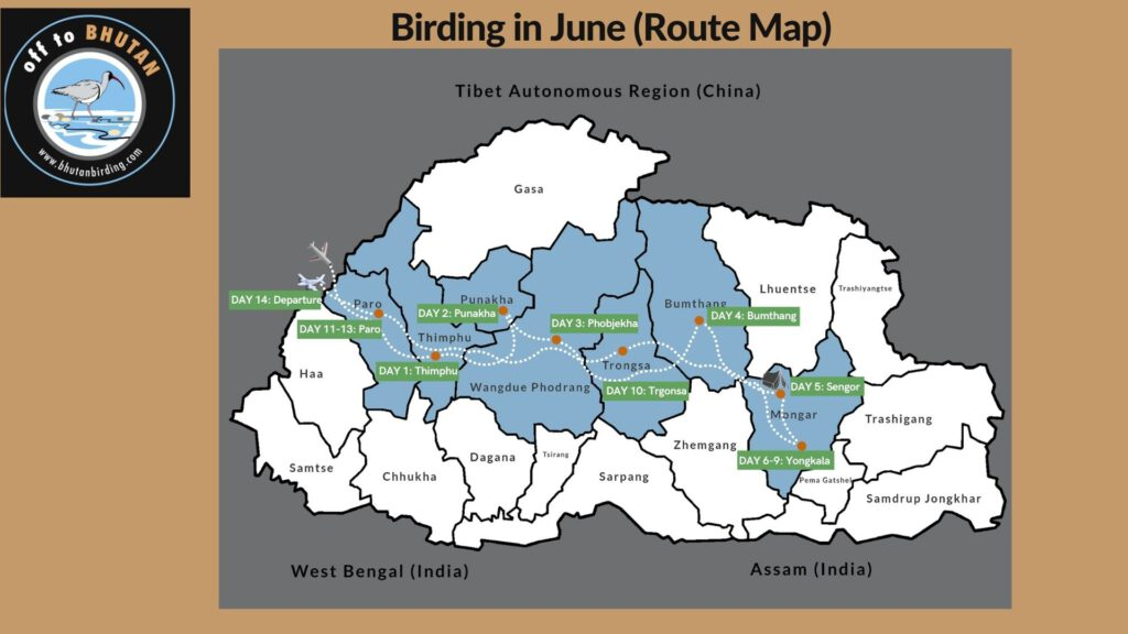 Route map for the off season birding tours in Bhutan.